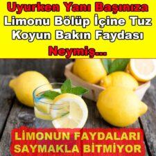 Uyurken Yanı Başınıza Limonu Bölüp İçine Tuz Koyun İşte Faydaları